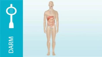 Meer informatie over darmen spoelen
